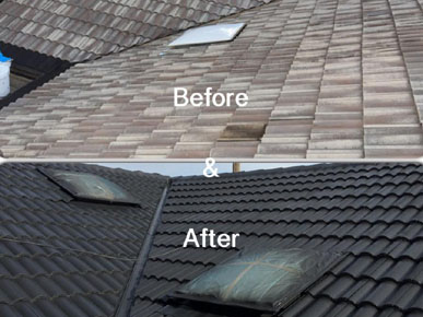 best-roof-restoration